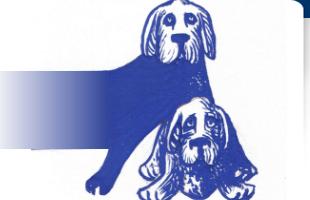 Hond-en-Handicap